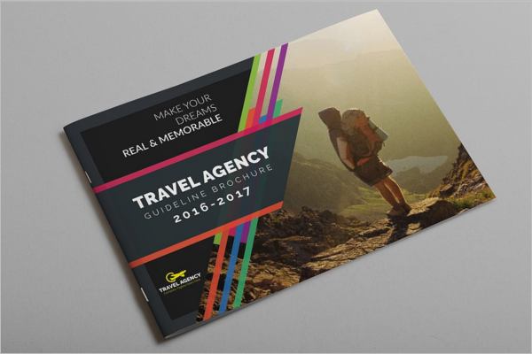 Travel Guide Brochure