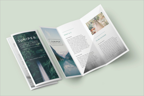 Trifold Magazine Brochure Template