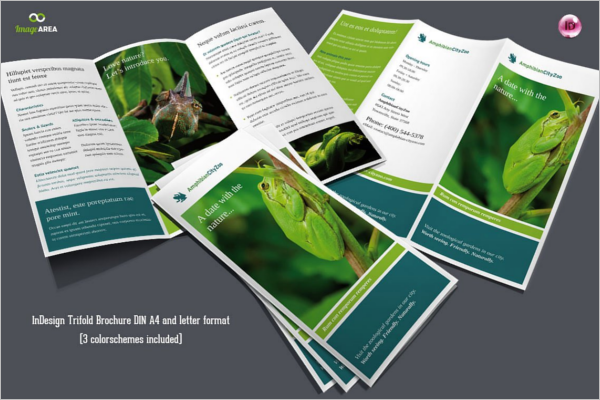 Trifold Zoo Brochure Template