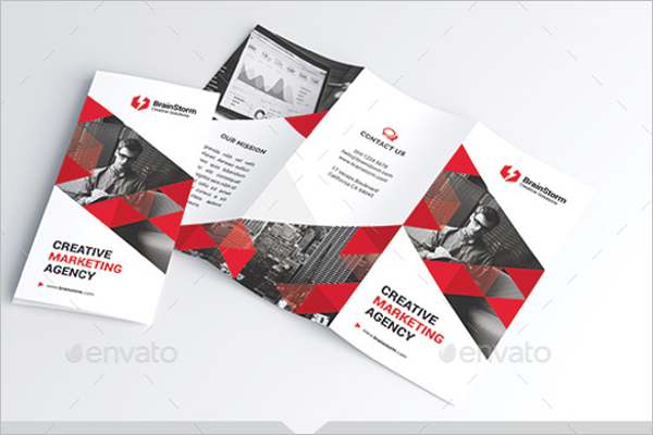 Vertical Business Brochure Design
