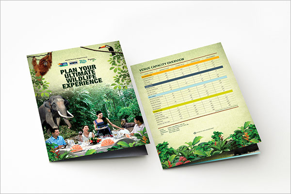 Zoo Brochure Design Free PSD