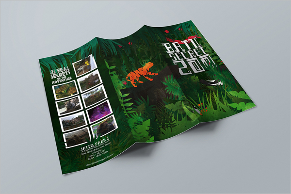 Zoo Brochure Example