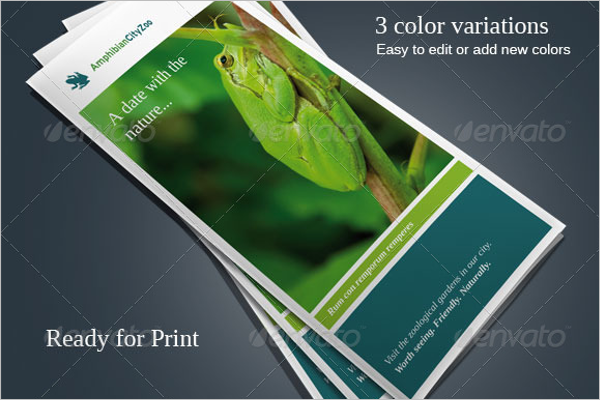 Zoo Brochure Template