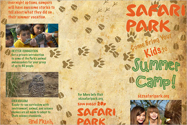 Zoo Safari Brochure Design